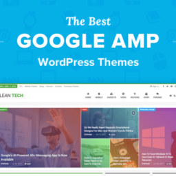 Best AMP WordPress Themes for 2019