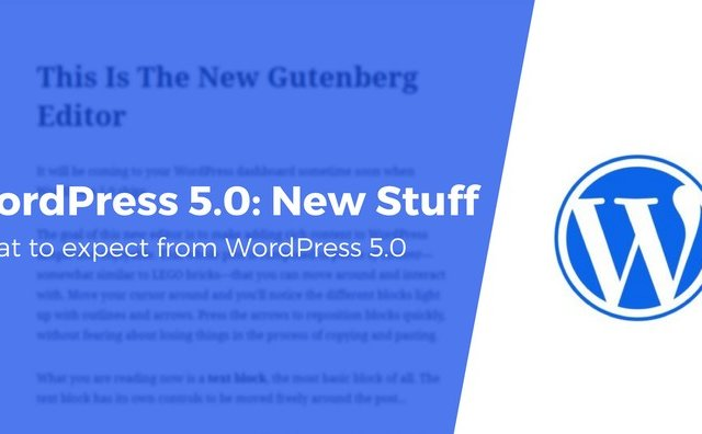 wordpress-50